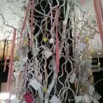 Restaurante La Seu: La cuina del paladar – Denia (Alicante)