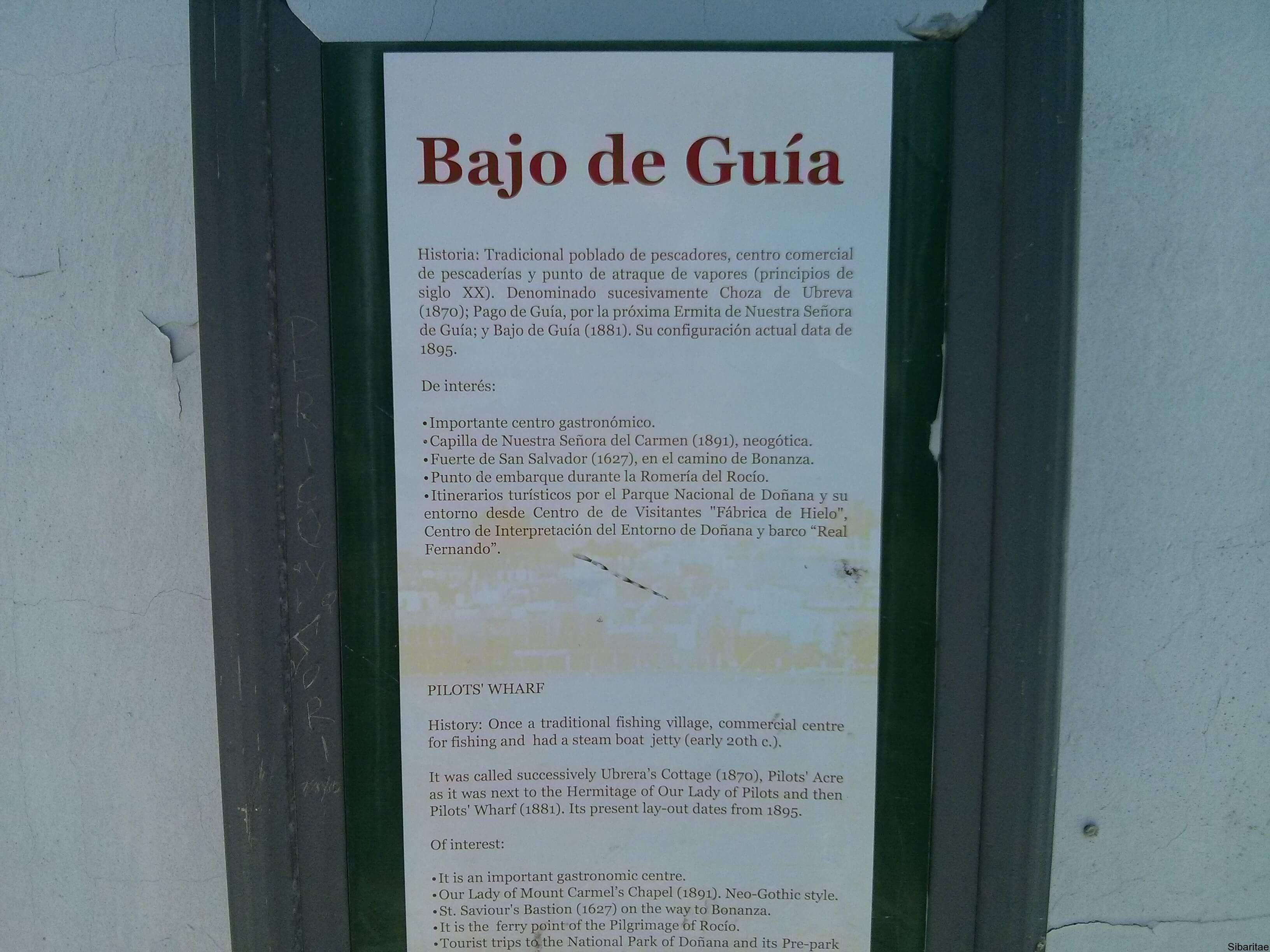 Bajo_guia