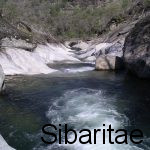 Los Pilones- Valle del Jerte (Extremadura)