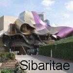 Bodegas Marqués de Riscal: La arquitectura visionaria- Elciego (Alava)