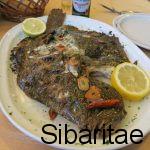Asador Astillero-Getaria: Capital mundial de los pescados a la brasa